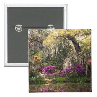 Los E.E.U.U., Carolina del Sur, Charleston. Árbole Pin Cuadrada 5 Cm
