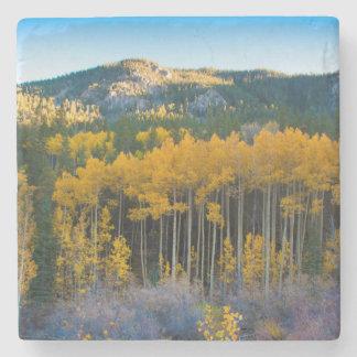 Los E.E.U.U., Colorado. Álamos tembloses amarillos Posavasos De Piedra