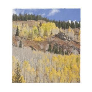 Los E.E.U.U., Colorado, bosque del Estado de Gunni Blocs