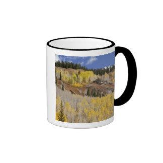 Los E.E.U.U., Colorado, bosque del Estado de Gunni Taza De Café
