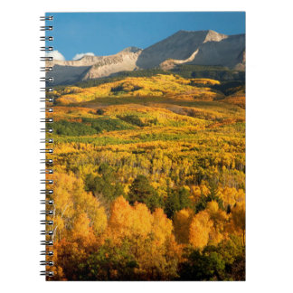 Los E.E.U.U., Colorado, bosque del Estado de Libretas