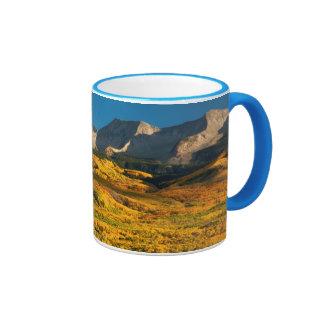 Los E.E.U.U., Colorado, bosque del Estado de Tazas De Café
