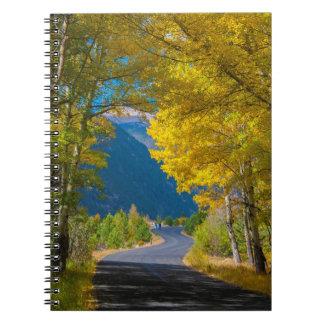 Los E.E.U.U., Colorado. Camino flanqueado por los Libretas Espirales
