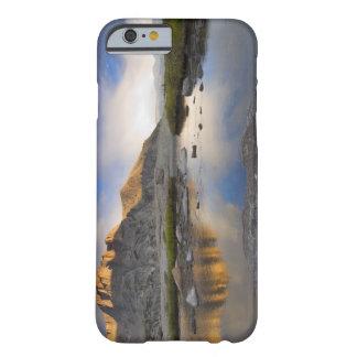 Los E.E.U.U., Colorado, montaña rocosa NP Funda De iPhone 6 Barely There