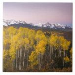 Los E.E.U.U., Colorado, montañas rocosas.  Amanece Azulejo Cuadrado Grande