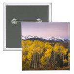 Los E.E.U.U., Colorado, montañas rocosas.  Amanece Pin Cuadrado
