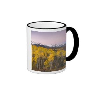Los E.E.U.U., Colorado, montañas rocosas.  Amanece Taza A Dos Colores