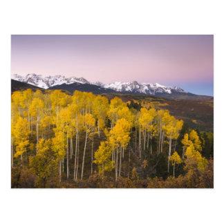Los E.E.U.U., Colorado, montañas rocosas.  Postal