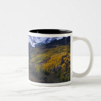 Los E.E.U.U., Colorado, montañas rocosas, San Juan Taza De Dos Tonos