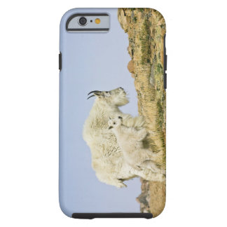 Los E.E.U.U., Colorado, montañas rocosas, soporte Funda Resistente iPhone 6