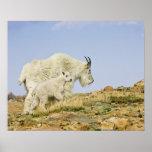 Los E.E.U.U., Colorado, montañas rocosas, soporte  Posters