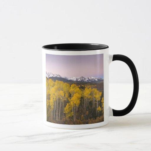 Los E.E.U.U., Colorado, montañas rocosas.  Taza