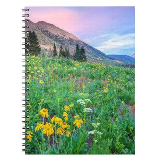 Los E.E.U.U., Colorado, mota con cresta. Paisaje 2 Libros De Apuntes Con Espiral