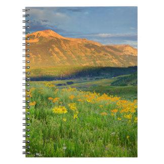 Los E.E.U.U., Colorado, mota con cresta. Paisaje 3 Libros De Apuntes Con Espiral