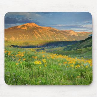 Los E.E.U.U., Colorado, mota con cresta. Paisaje 3 Tapete De Ratones