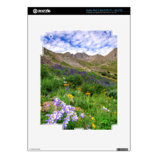Los E.E.U.U., Colorado. Wildflowers en lavabo iPad 3 Skin