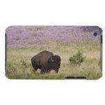 Los E.E.U.U., Dakota del Sur, bisonte americano Carcasa Para iPod