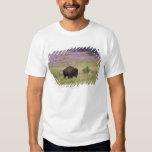 Los E.E.U.U., Dakota del Sur, bisonte americano Poleras