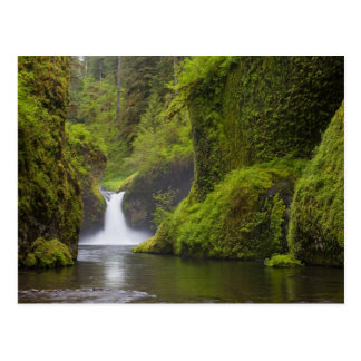 Los E.E.U.U., Eagle Creek, garganta de Columbia, O Tarjeta Postal
