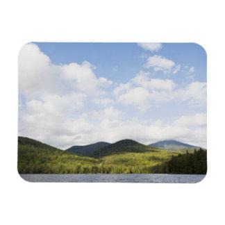 Los E.E.U.U., Estado de Nuevo York, montañas de Iman Flexible