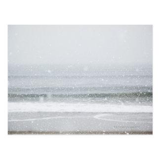 Los E.E.U.U., Estado de Nuevo York, playa de Postal