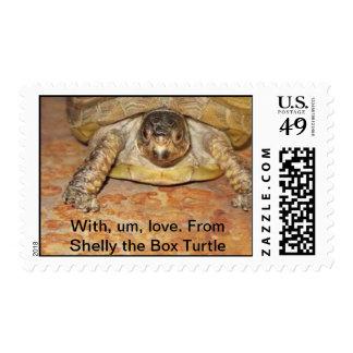 Los E.E.U.U. exfoliados la tortuga postal del Sellos