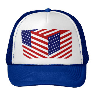 Los E E U U Flag_ Gorra