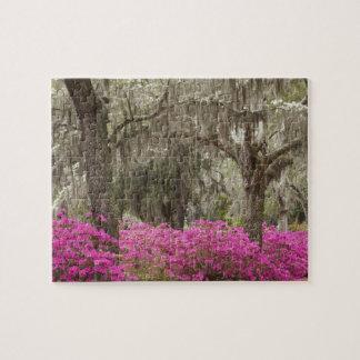 Los E.E.U.U., Georgia, sabana, primavera en histór Rompecabezas Con Fotos