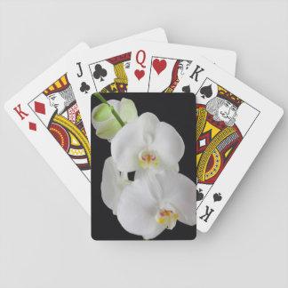 Los E.E.U.U., Georgia, sabana, racimo de orquídeas Baraja De Cartas