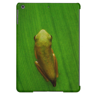 Los E.E.U.U., Georgia, sabana, rana minúscula en Carcasa Para iPad Air