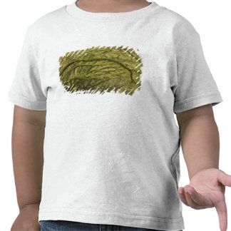 LOS E.E.U.U.; Georgia; Sabana. Robles con Camisetas
