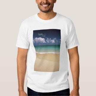 Los E.E.U.U., Hawaii. Escena de la playa Polera