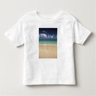 Los E.E.U.U., Hawaii. Escena de la playa Remera