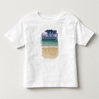 Los E.E.U.U., Hawaii. Escena de la playa Remeras