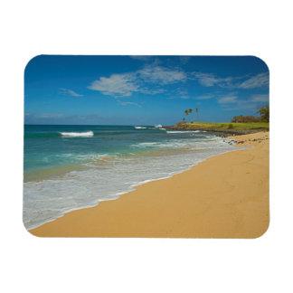 Los E.E.U.U., Hawaii, isla de Molokai, playa de Imanes