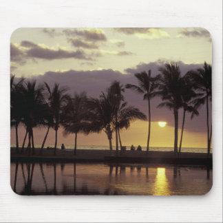 Los E.E.U.U., Hawaii, isla grande, par, palmeras Mousepad