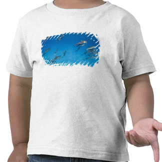 Los E E U U Hawaii isla grande vista subacuáti Camiseta