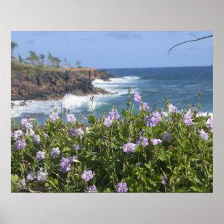 Los E.E.U.U., Hawaii, Kauai, cerca de Kapaa, del n Posters
