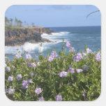 Los E.E.U.U., Hawaii, Kauai, cerca de Kapaa, del Calcomania Cuadradas