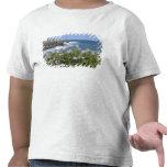 Los E.E.U.U., Hawaii, Kauai, cerca de Kapaa, del Camisetas