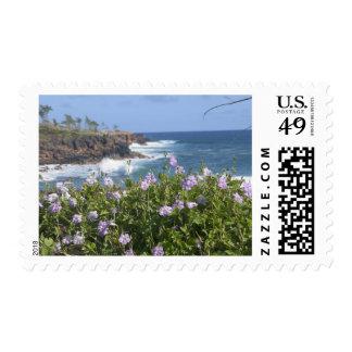 Los E.E.U.U., Hawaii, Kauai, cerca de Kapaa, del Sellos