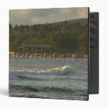 Los E.E.U.U., Hawaii, Kauai, costa del sudoeste, c