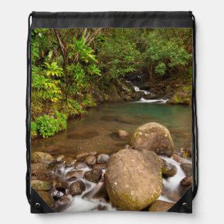 Los E.E.U.U., Hawaii, Kauai. El fluir de la cala Mochila