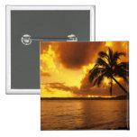 Los E.E.U.U., Hawaii, Kauai, salida del sol colori Pins