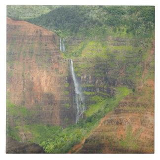 Los E.E.U.U., Hawaii, Kauai, Waimea, barranco de W Azulejo Cuadrado Grande