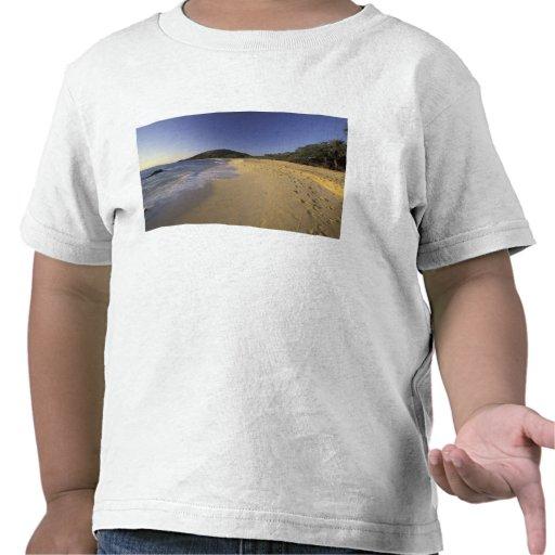Los E.E.U.U., Hawaii, Maui, huellas en la arena, M Camiseta
