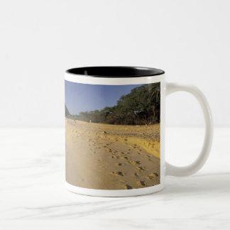 Los E.E.U.U., Hawaii, Maui, huellas en la arena, M Taza Dos Tonos