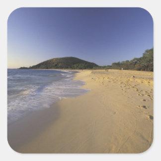 Los E.E.U.U., Hawaii, Maui, huellas en la arena, Pegatina Cuadrada