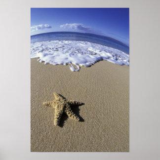 Los E.E.U.U., Hawaii, Maui, playa de Makena, estre Posters