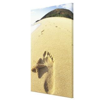 Los E.E.U.U., Hawaii, Maui, playa de Makena, huell Impresiones En Lienzo Estiradas